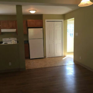 Large, new 3 bedroom, ground level flat in bible hill. $995 plus