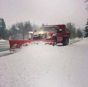 Travis's Snow Removal Fall Leaves Lawn Care Open Year Round Too Oakville / Halton Region Toronto (GTA) image 10