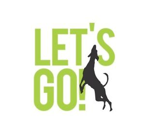 Let's Go! Dog Walking & Pet Services NW Calgary