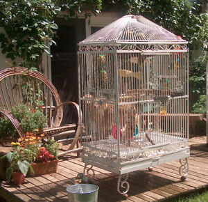 Antique Iron bird cage ( also posted under lawn and garden)