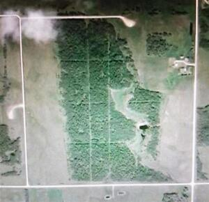 Fantastic 137.69 Acres Located by Cherhill!