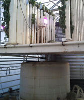 Vertical Growing Operational Aquaponics System ZipGrow Towers
