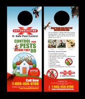 Wasp control specialist