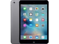 iPad Mini 2 - 16GB Space Grey - WiFi - HD Retina Display - Great Condition - With Protective Cover