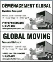 DEMENAGEMENT GLOBAL MOVING DELIVERY