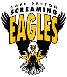 WANTED:  A  SCREAMING EAGLES  PUCK