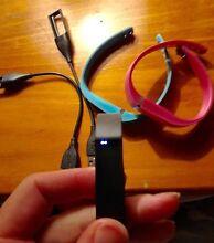 Fitbit Flex Punchbowl Launceston Area Preview