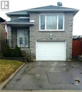 Gorgeous 3bd1bth Courtice Upper unit 5min to 401&big fenced yard