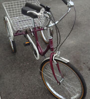 Adult Norco Parklane 6 speed Tricycle $350 OBO