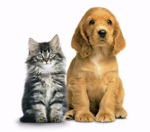 FOR SALE OR TRADE: PET FOOD AND ACCESSORIES FRANCHISE