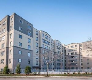 Luxurious Apartment Downtown St. Catharines