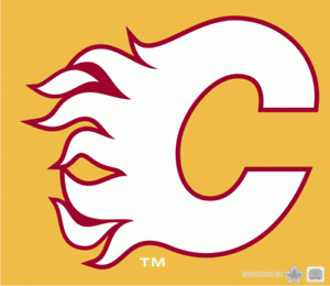 CALGARY FLAMES OCTOBER AND PREMIUM GAMES - NICE SEATS CHEAP!!