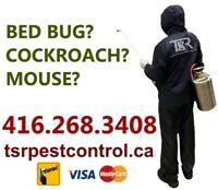 PEEL MOUSE, RAT & INSECT EXPERTS. PEST CONTROL. 416-268-3408