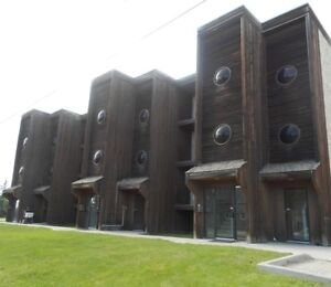 #447- : 1 Bedroom Apt in Beaverlodge Available Now! $850
