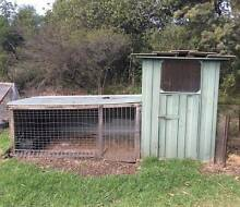 Chicken shed/bird aviary Red Range Glen Innes Area Preview