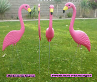 Pink Flamingos and Celebratory Signs for your Occasions!