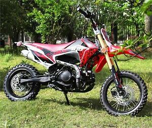T4B X87 125cc Pit Dirt Bike Motocross 4 Stroke 14/12 Pre-Sale