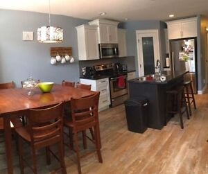 Roommate wanted for bright basement suite