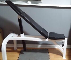 Northern Lights Flat / Incline Bench