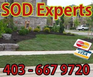 Call super deal for SOD installation 403 667 9720
