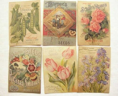 Set of 18 VINTAGE LOOK SEED and FLOWER PACKET LABELS VICTORIAN Primitive/Grungy