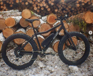 Electronic fat bike