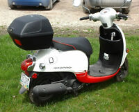 Barely Used Honda Giorno 2013 Scooter / Moped