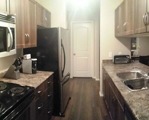 Completely Furnished 2 bedroom, 2 Bathroom Condo Strathcona County Edmonton Area image 4
