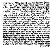 Kosher Mezuzah Scroll