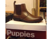 1 Pair of Brand New Brown Hush Puppy Mens Boots Size 11 with shoe box
