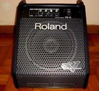 Monitor Roland Vdrums pm-10