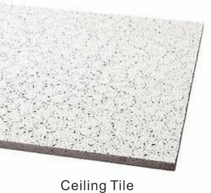 Konik Stallion Ceiling Tile for only $4.49/Tile (6030 50 Street)