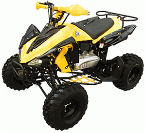 Youth & Adult ATV  N Model Limited Time Offer Now On Sale $1299