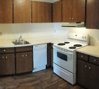 Large One Bedroom- Pool & Hot Tub- Covered Parking- Pets OK