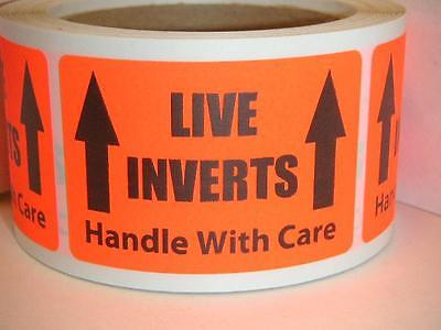Live Inverts Handle With Care Fluor Red 2x3 Warning Sticker Label 50 Labels