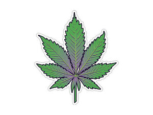 Pot Leaf - Marijuana Leaf - Indica   (Bumper Sticker)