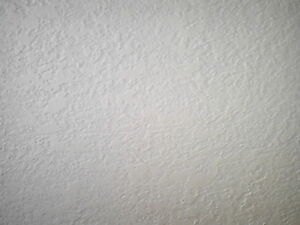 Drywall Taping, Muding, and Plaster Repair Cambridge Kitchener Area image 5