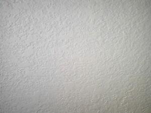 Drywall Taping, Muding, & Plaster Repair Kitchener / Waterloo Kitchener Area image 5
