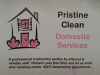Pristine Clean - Local Domestic House Cleaner
