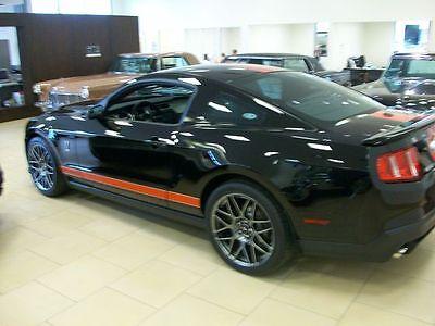 Ford Mustang 2 color Rocker stripes Stripe Graphics GT500 Shelby Cobra 2005 2015