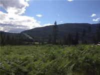 38.2 useable/subdividable acres in desirable Pass Creek!