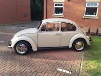 classic beetle for sale