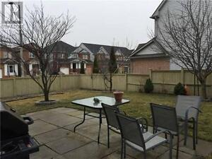 Basement apartment for rent at Steeles/Markham Rd in Markham