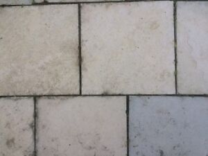 "150 Natural  Credit Valley Flagstone Patio Stones 12"" x 12"""