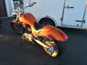 reduced REDUCED  Victory Hammer & Sportster HD 1200 & trailer