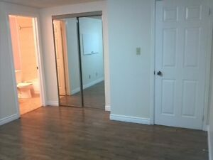 Large Basement Room by Seneca / Grocery / Mall / Library / Park