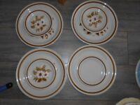 Plates Stoneware Japan- Dried Flowers /Vanilla Spice BUNDLE