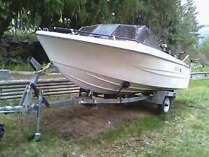 FOR SALE GRAB & RUN  THERMOGLASS BOAT 16 FOOT