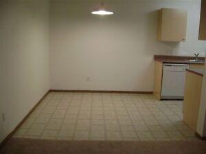 Great Location - 2 Bdrm Apartment -  5 Appliances Edmonton Edmonton Area image 4