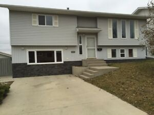 Lower level of newer house (one bedroom), available Jan 1/19